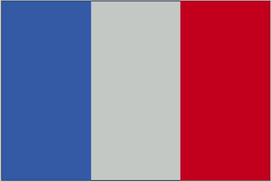A francia fordító segítségét bármikor kérheti