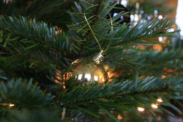Kihagyhatatlan fenyőfa kiváló áron